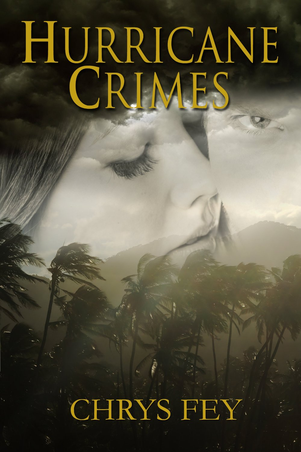 guest review by victoria hurricane crimes by chrys fey pure