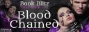 BloodChainedBlitzBanner