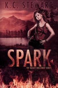 spark-ebook (1)